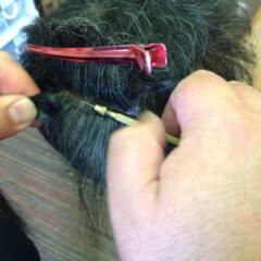 修理の植毛です