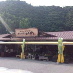 高知県伊野町に来ました