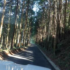 香川県から高知県へ